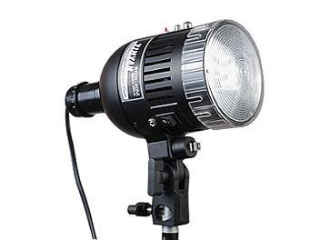 K&H SDW-80M AC Slave Flash