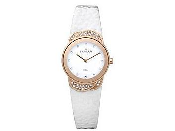Skagen 818SRLW Steel Ladies Watch