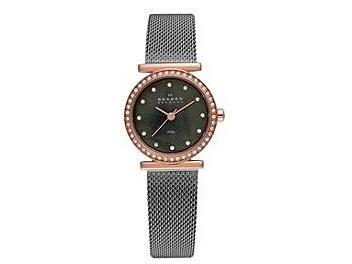 Skagen 108SRM Steel Ladies Watch