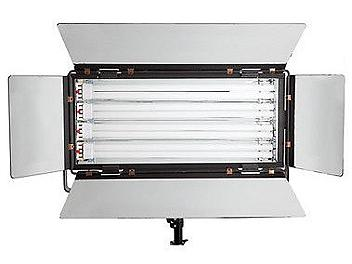 Dynacore DSRIV-55Wx6 Fluorescent Soft Light